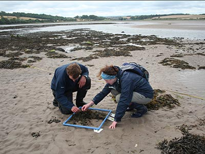 intertidal-monitoring-2014